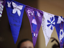 Nelson Girls College Flags